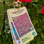 The Best Plant Tag Solution!