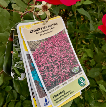 The best plant tag solution to keep your tags easily available when you need them! As a gardener I love this!