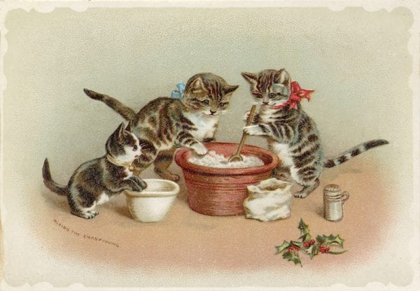 Xmas Pudding Cats