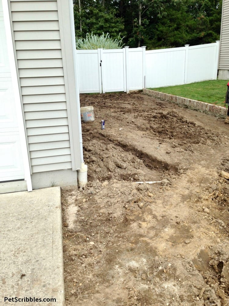 grass removed from side yard
