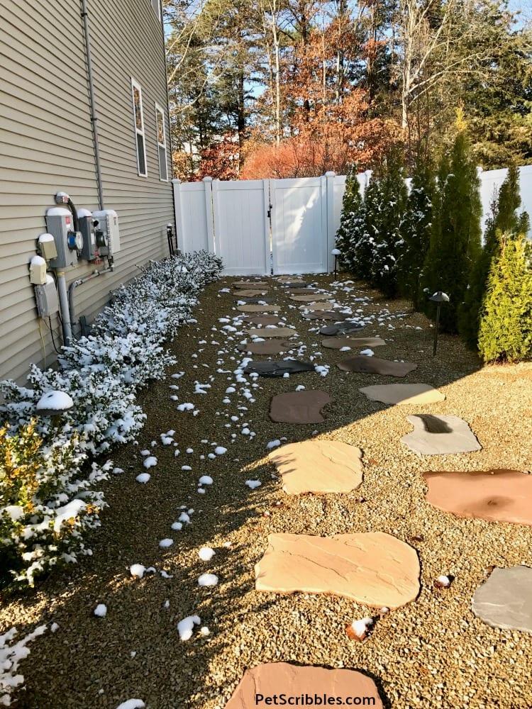 side yard in Winter