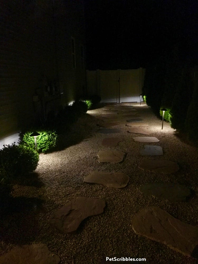 side yard lighting idea