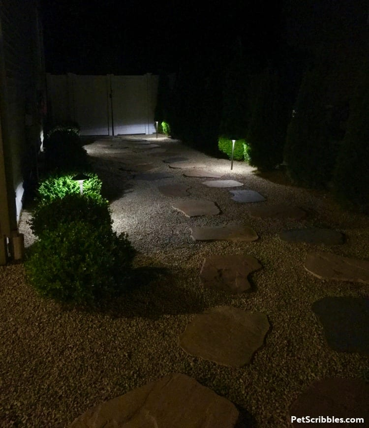 side yard makeover at night