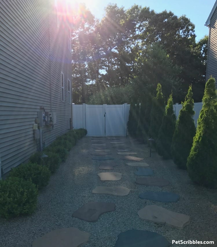side yard makeover during sunset