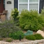 Evolution of a Garden Bed – Front Entrance