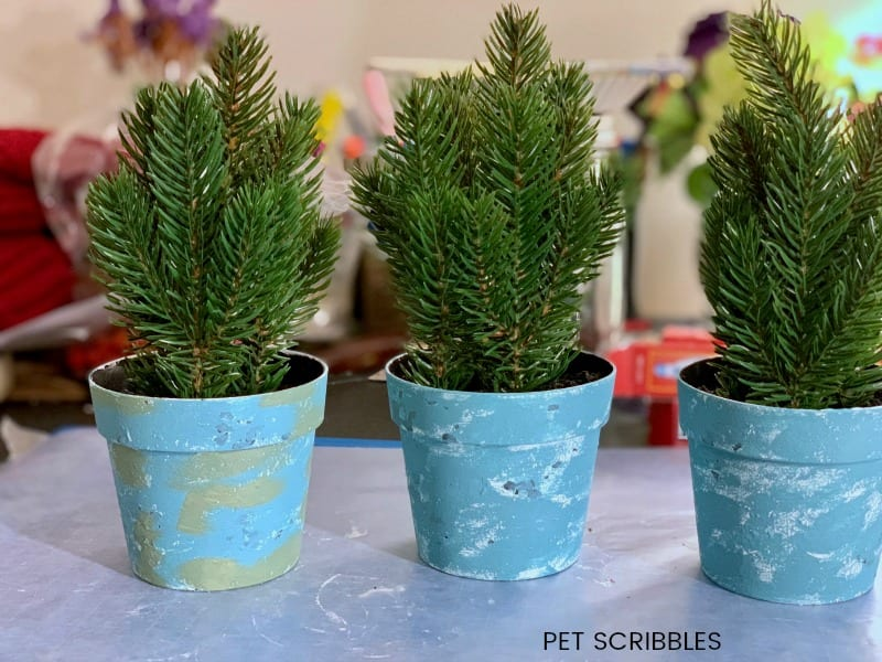 how to use chalk paint on plastic pots