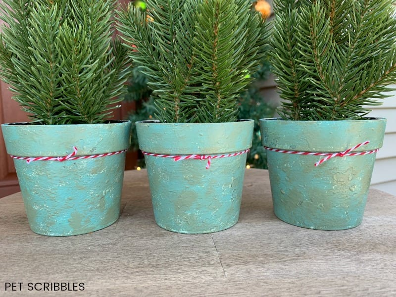 Chalk Paint on Plastic Pots - an amazing makeover!