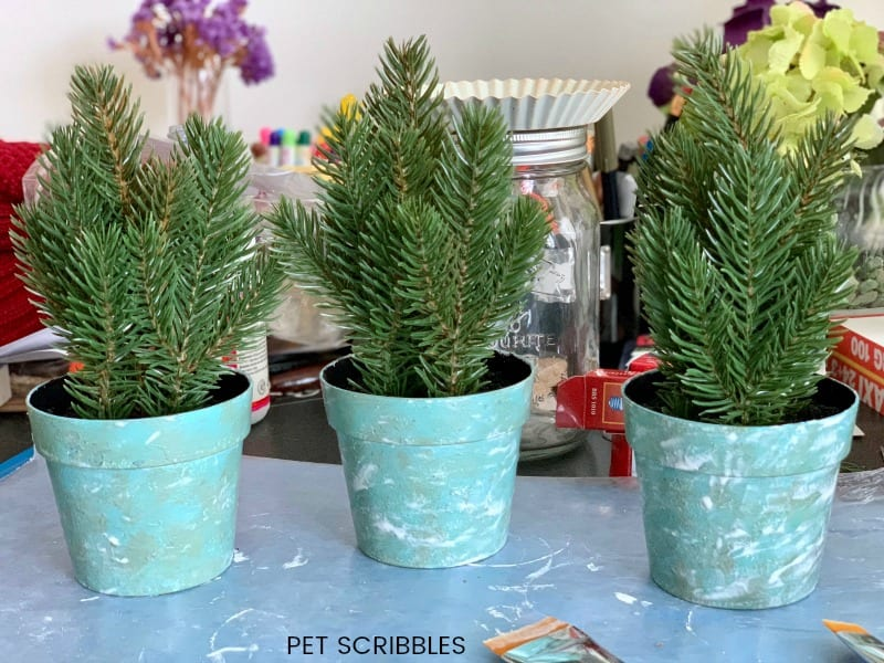 seal painted plastic pots with Mod Podge