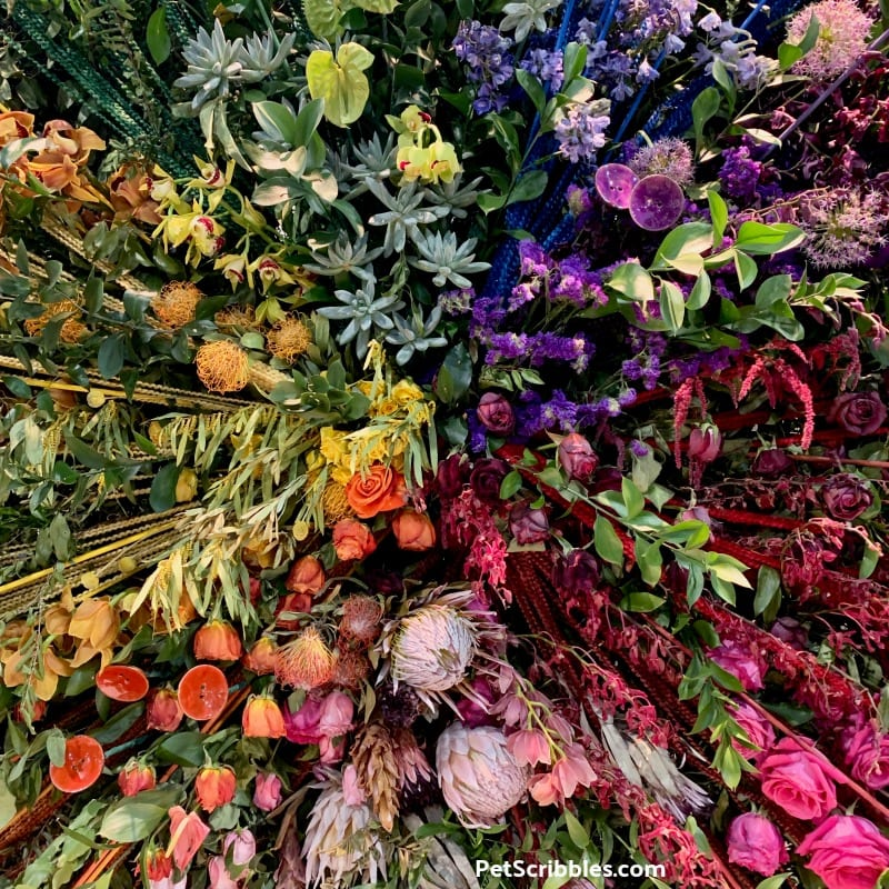 2019 Philadelphia Flower Show Theme Flower Power