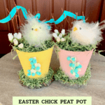 Easter Chick Peat Pot Decorations