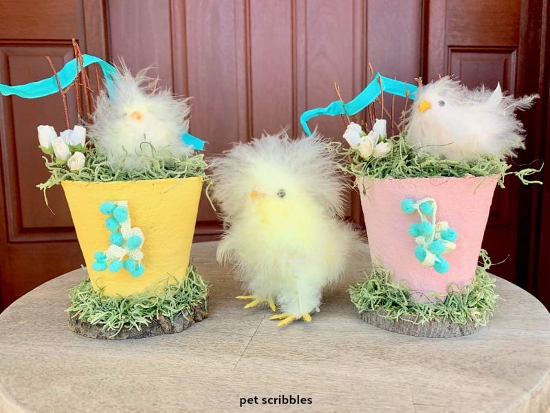 Easter Chick Peat Pots