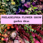 2019 Philadelphia Flower Show – Garden Ideas