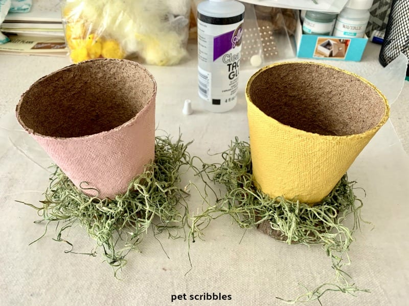 Spanish moss glued around peat pot base
