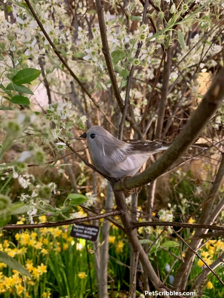 fake bird in Serviceberry tree at 2019 Philadelphia Flower Show