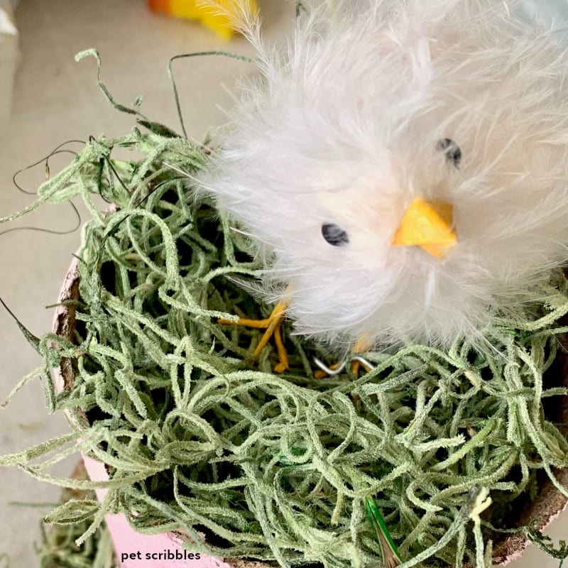 how to attach an Easter chick to a peat pot decoration