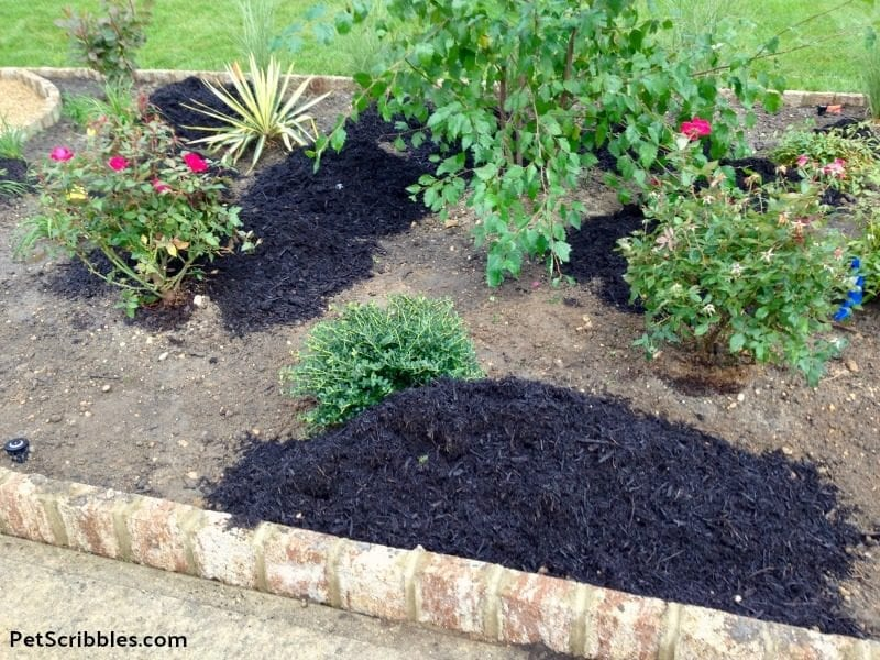 black mulch being added to a garden bed