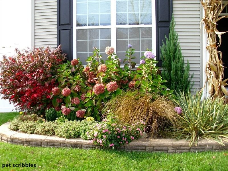 Fall garden with a mix of colors, textures and shapes