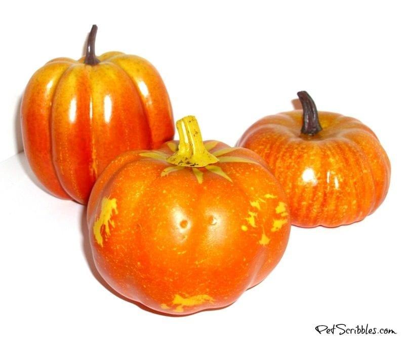 basic orange dollar store pumpkins