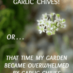 I hate garlic chives.