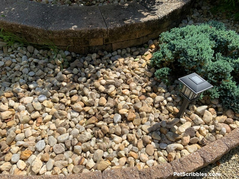river rocks in garden bed