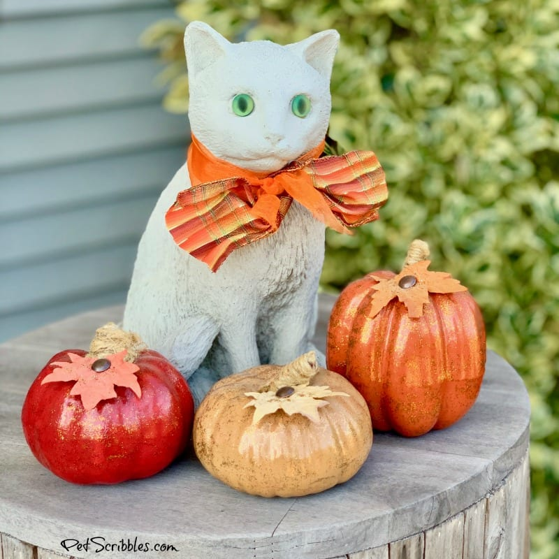 Fall outdoor porch vignette of cement kitty with pumpkins