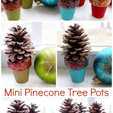 Mini Pinecone Tree Pots