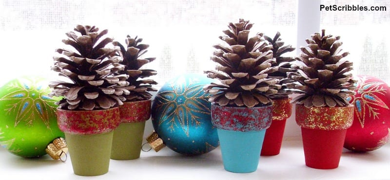 mini pinecone trees in pots
