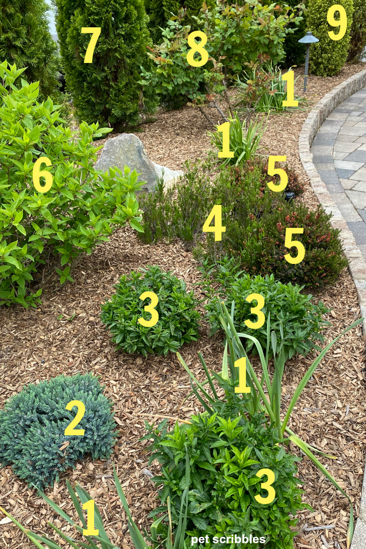 green garden color plants numbered and identified