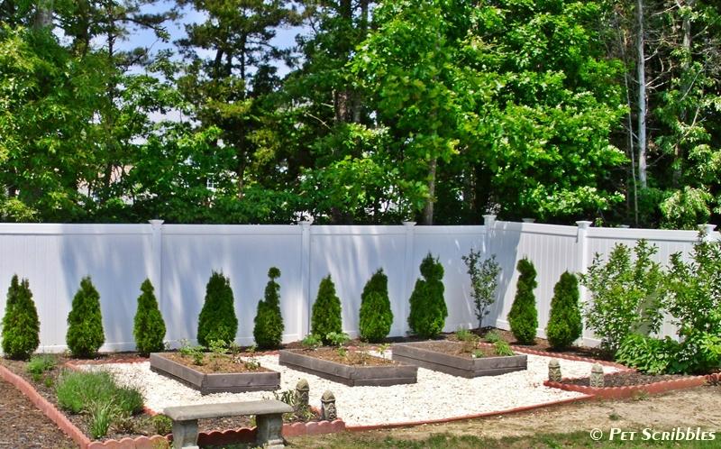 cedar vegetable beds