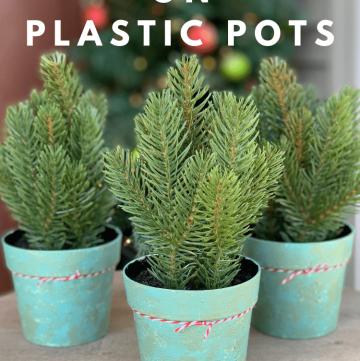 chalk paint on plastic pots