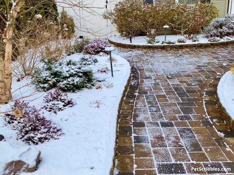 snowy Winter garden tour