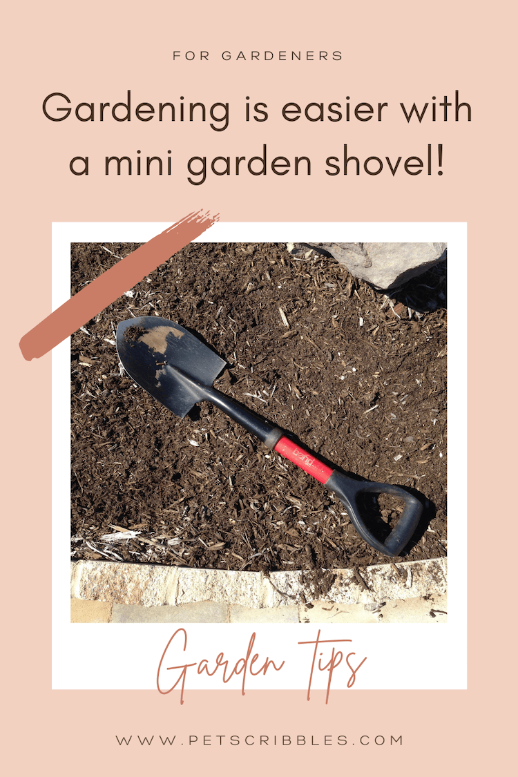 A mini garden shovel makes gardening easier. Read why this is such an essential gardening tool, especially for women. I love this shovel! via @petscribbles