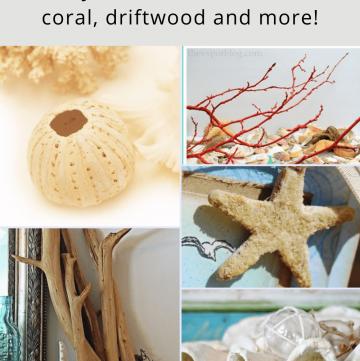 DIY Sea Life projects for coastal decor