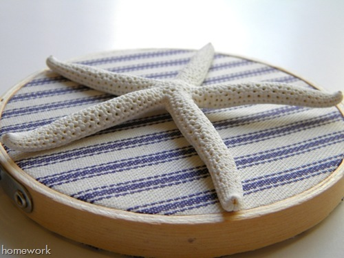 DIY Starfish Embroidery Hoop