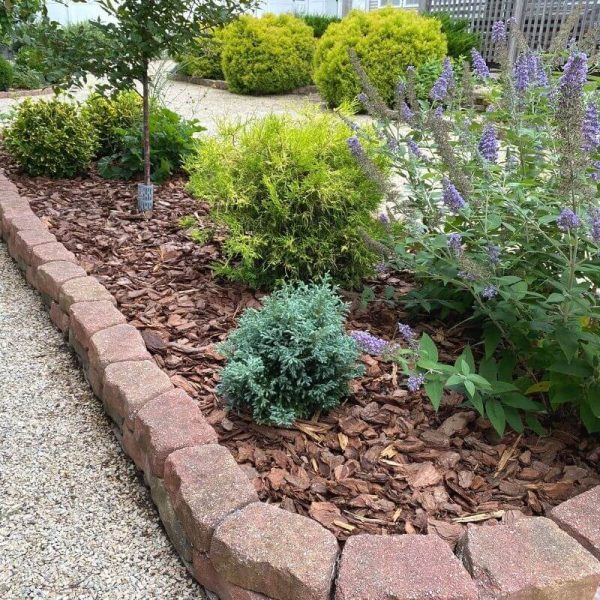 How to plan a new garden